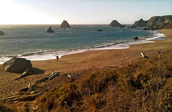 The picturesque Sonoma coast at the mouth of the Russian River in Northern California.