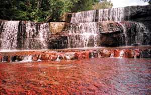 A view of Jaspen waterfall
