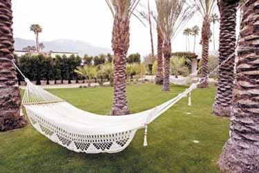 Kick back in Palm Springs.