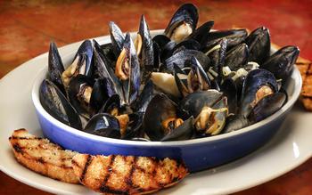 Giuseppe's mussels in sambuca