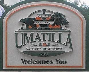 The city of Umatilla's new logo features a black bear and orange blossoms.