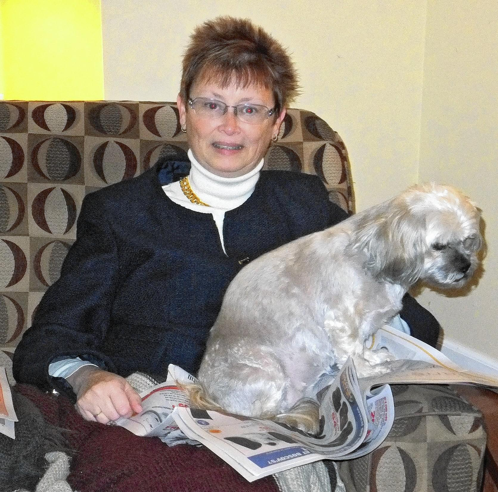 Muffin, an 8-year-old Lhasa apso, is owned and loved by Lauren Giguere, 56, of Schnecksville.