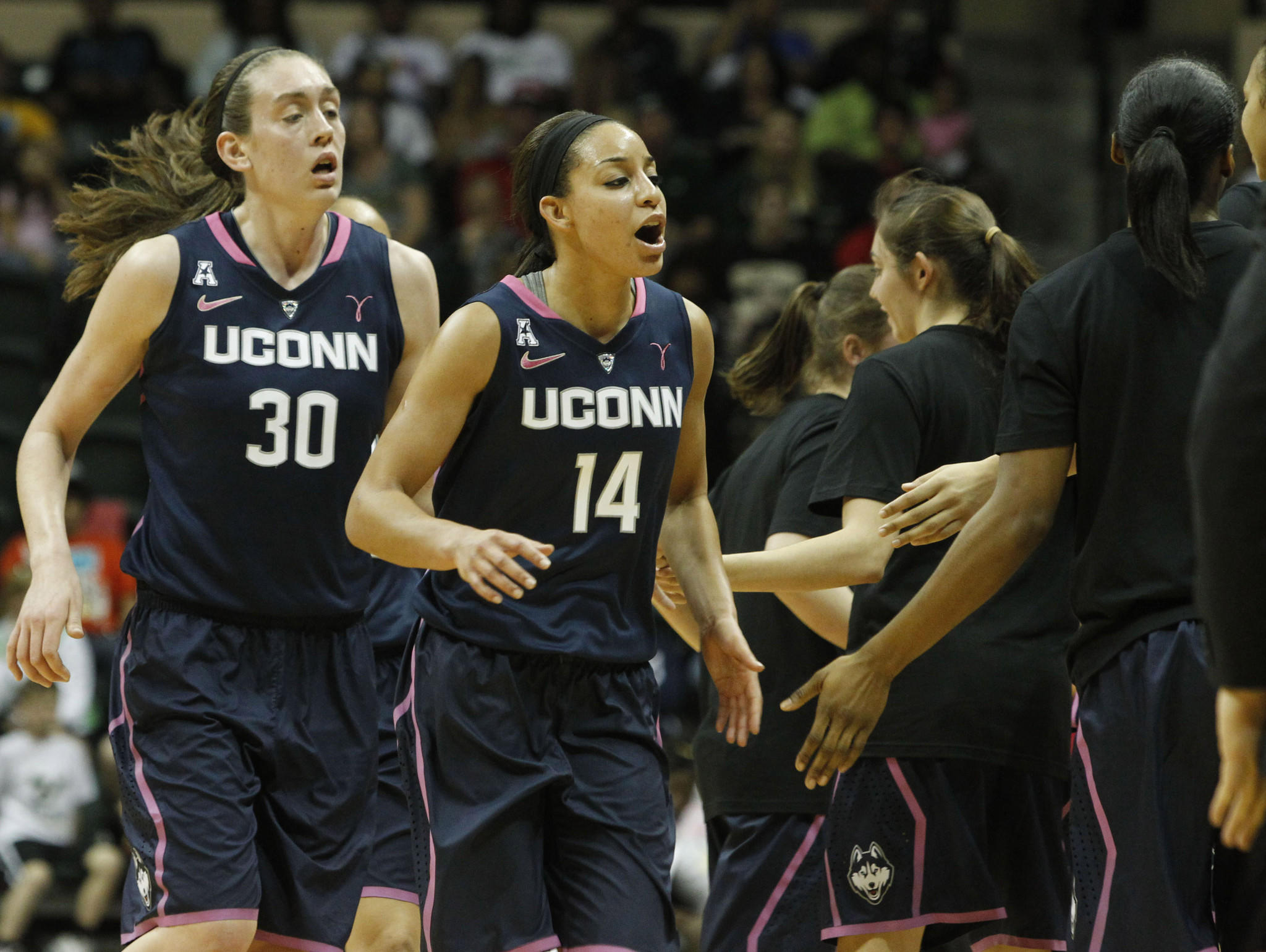 Feb 16, 2014; Tampa, FL, USA; Connecticut Huskies guard Bria Hartley (14) celebrates with forward Breanna Stewart (30) against the South Florida Bulls during the second half at USF Sun Dome. The Huskies won 63-38. Mandatory Credit: Kim Klement-USA TODAY Sports ORG XMIT: USATSI-162378