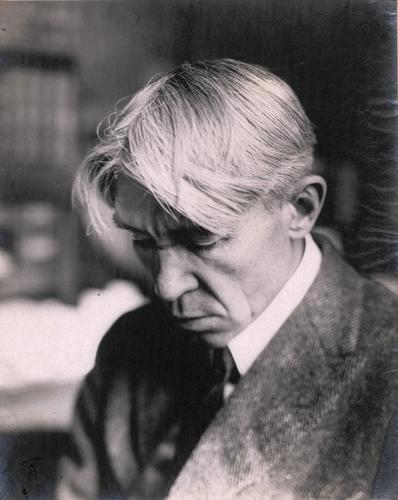carl sandburg essay 2012-7-25  the long lives of carl and paula sandburg carl's childhood and youth carl was born the second of seven children on january 6, 1878 in.