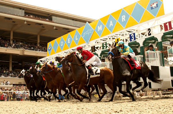 Del Mar Racetrack will begin looking for the right dirt materials to replace its synthetic cover and start the permit process toward gaining a dirt track by 2015.