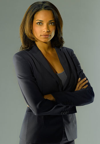 Fall TV 2009: Familiar faces: Rochelle Aytes