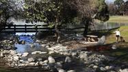 L.A. Walks: Whittier Narrows Recreation Area