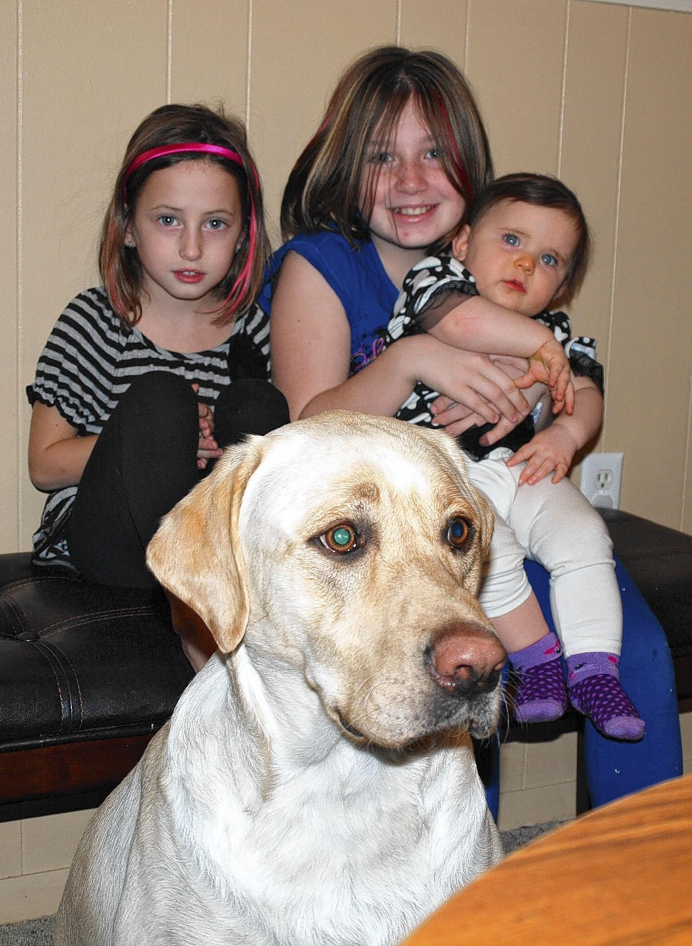 Sophia, 5 (from left), Makenzie, 9, and Ricki, 11 months, with their 2-year-old yellow Labrador, Barney.
