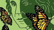 Monarchs, milkweed and the spirit of Rachel Carson