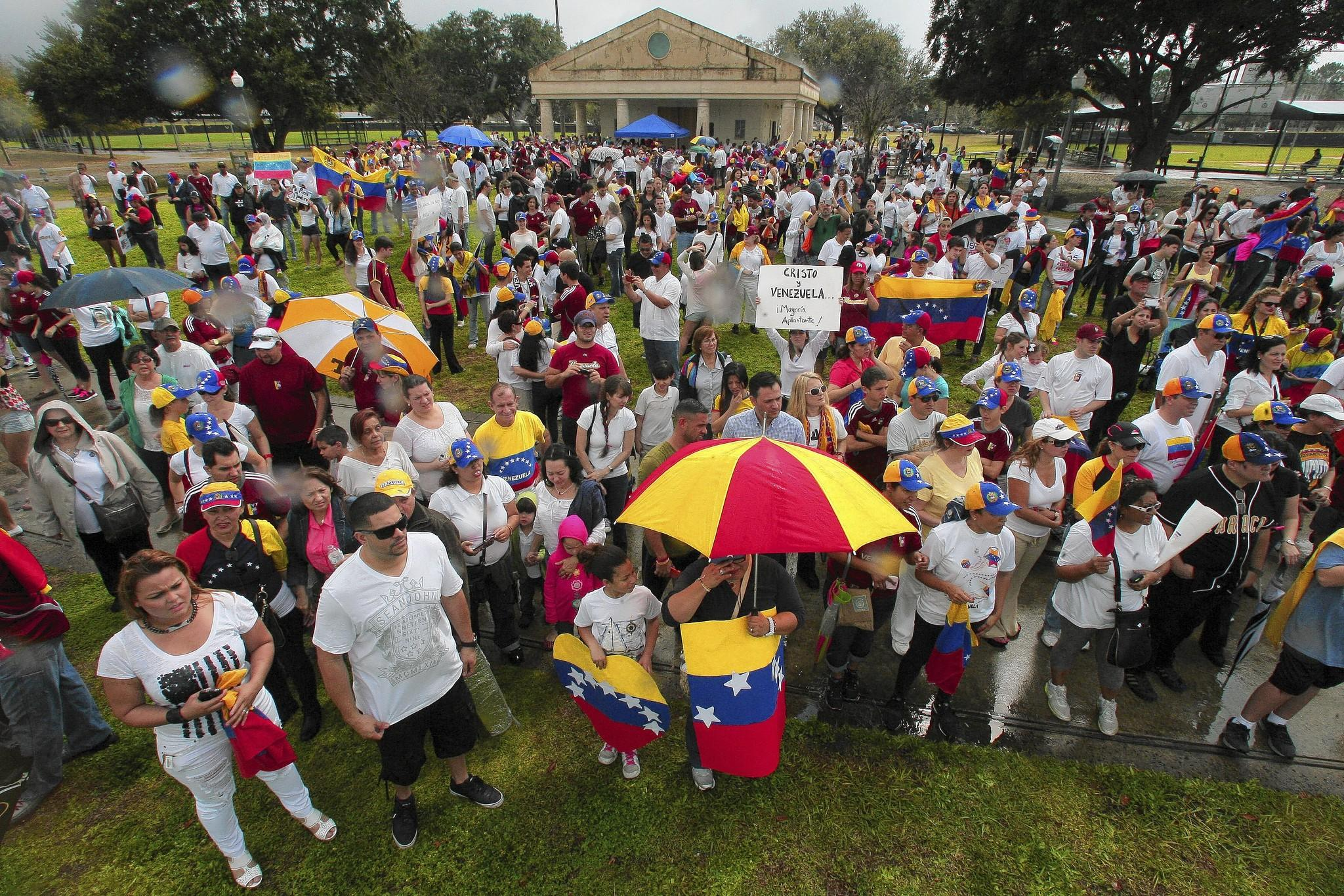 Venezuela supporters gather at Blue Jacket Park in Orlando to protest the Venezuelan government during a world-wide protest movement. Saturday, February 22, 2014. (Gary W. Green/Orlando Sentinel)