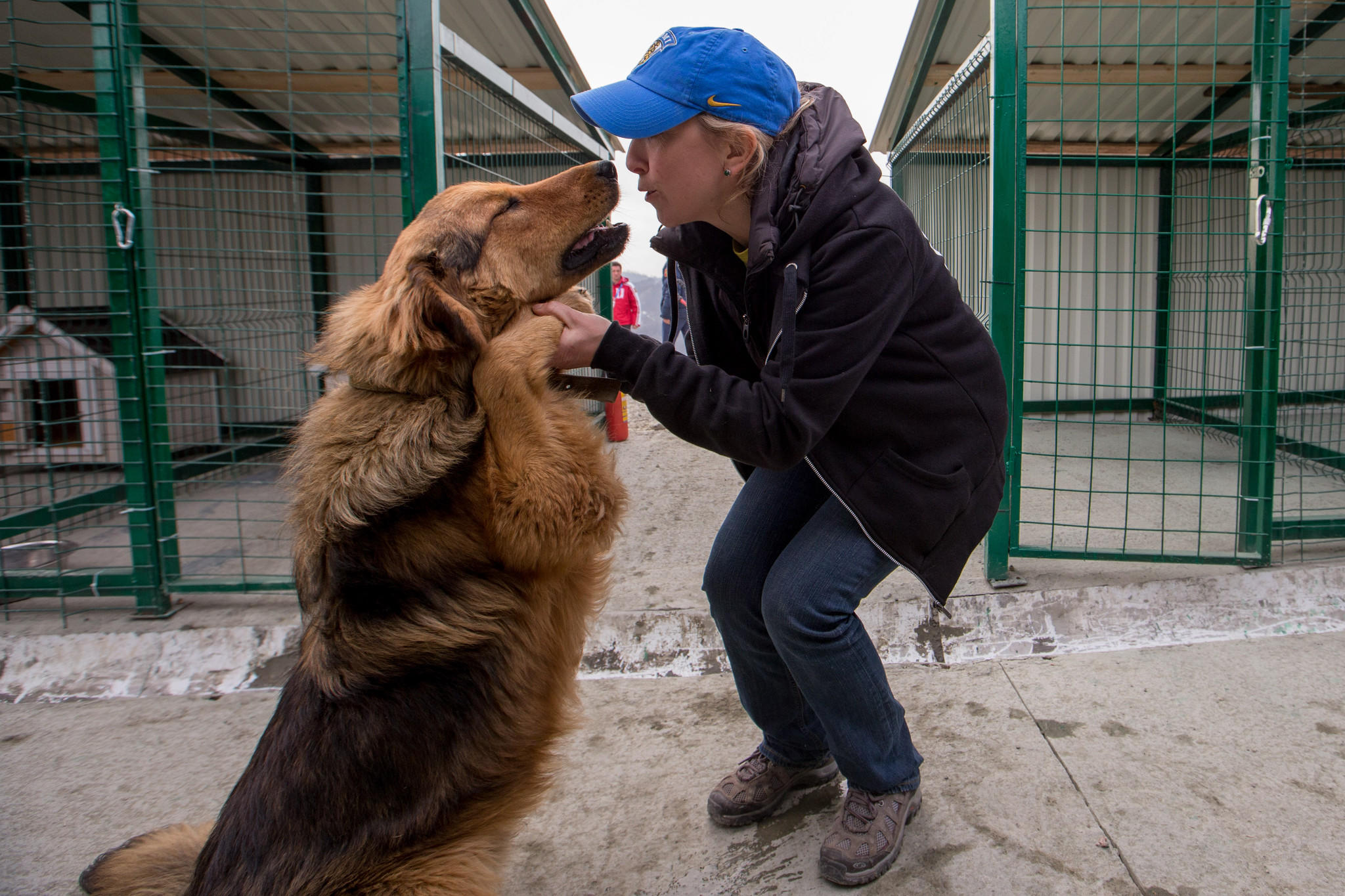 Nadezhda Mayboroda who heads PovoDog dog shelter, plays with one of the rescued dogs during the Sochi 2014 Olympic Winter Games. Construction of a new facility, which was recently finished, will allow the shelter (which currently has about 100 dogs) to house up to 250 dogs.