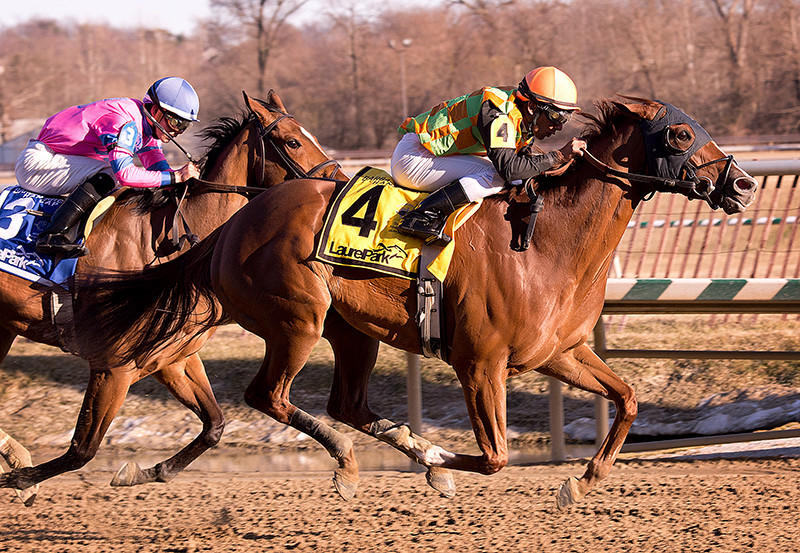 My Wandys Girl and Rajiv Maragh fend off post time favorite La Verdad to win the Barbara Fritchie Handicap (G2) at Laurel Park.