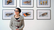 Lynne Parks explores loss of migratory songbirds in BMA exhibit