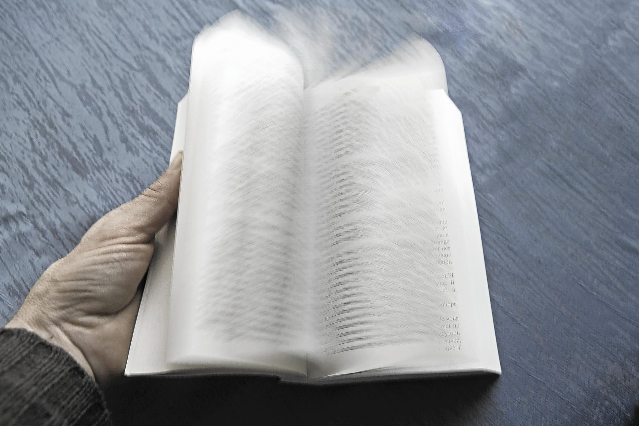 The Biblioracle thinks that the joys of reading a well written passage slowly are worth more than reading it quickly.