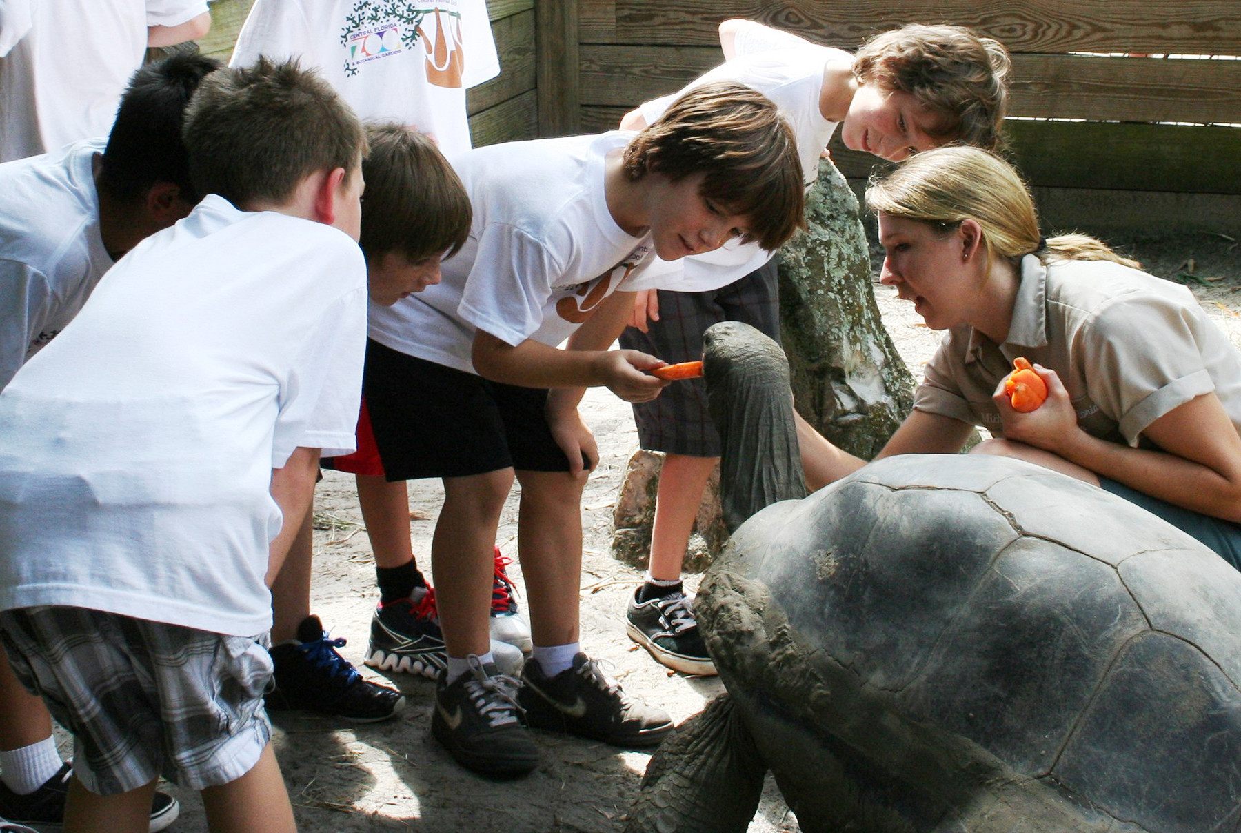 Summer campers learn valuable lessons from the many animals at Central Florida Zoo and Botanical Gardens.