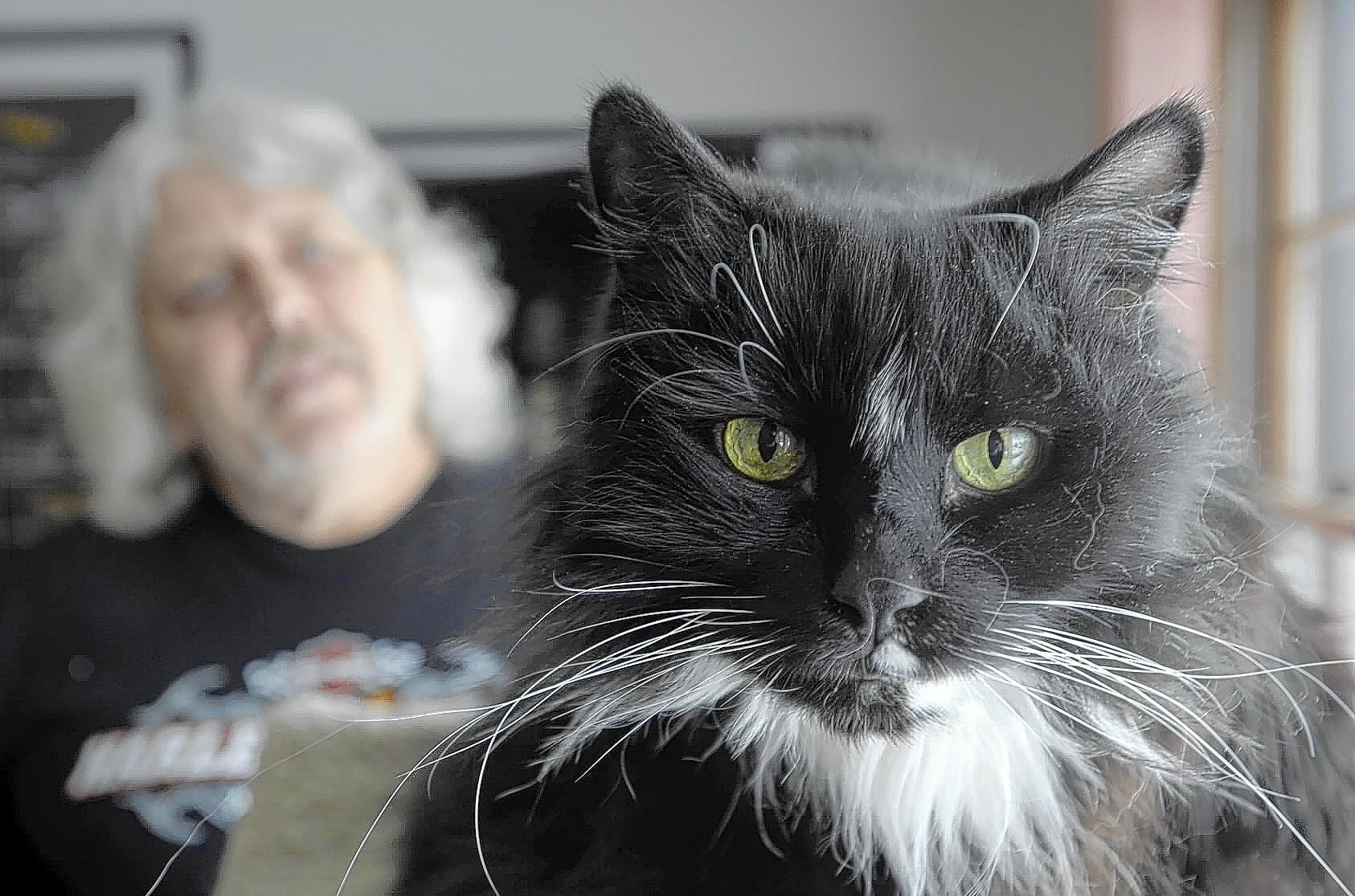 """They're just not animal friendly. What if it was a human?"" asks Dan Quartin of Newington in reference to an incident on Christmas Eve when he tried buying insulin and syringes for his diabetic cat, Rusty, but was refused by CVS at its Elmwood store."