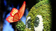 Pictures: 2014 Epcot International Flower & Garden Festival