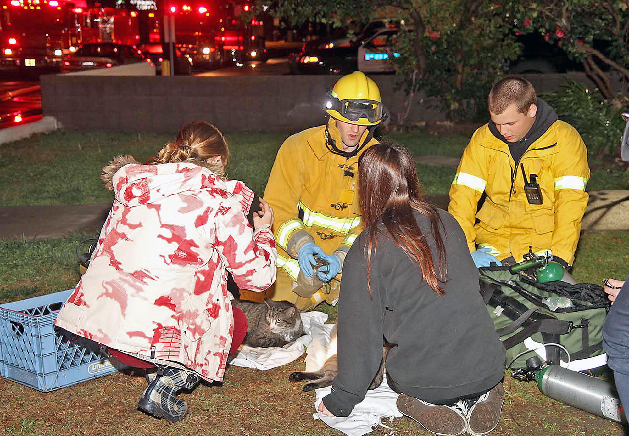 Firefighters gave two cats oxygen after a house fire in the 100 block of North Sparks Street on Saturday, March 1, 2014.