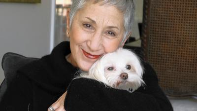 Cari Meyers, Puppy Mill Project founder