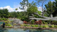 Discovery Cove: Contest winner will get front-yard makeover from horticulture team