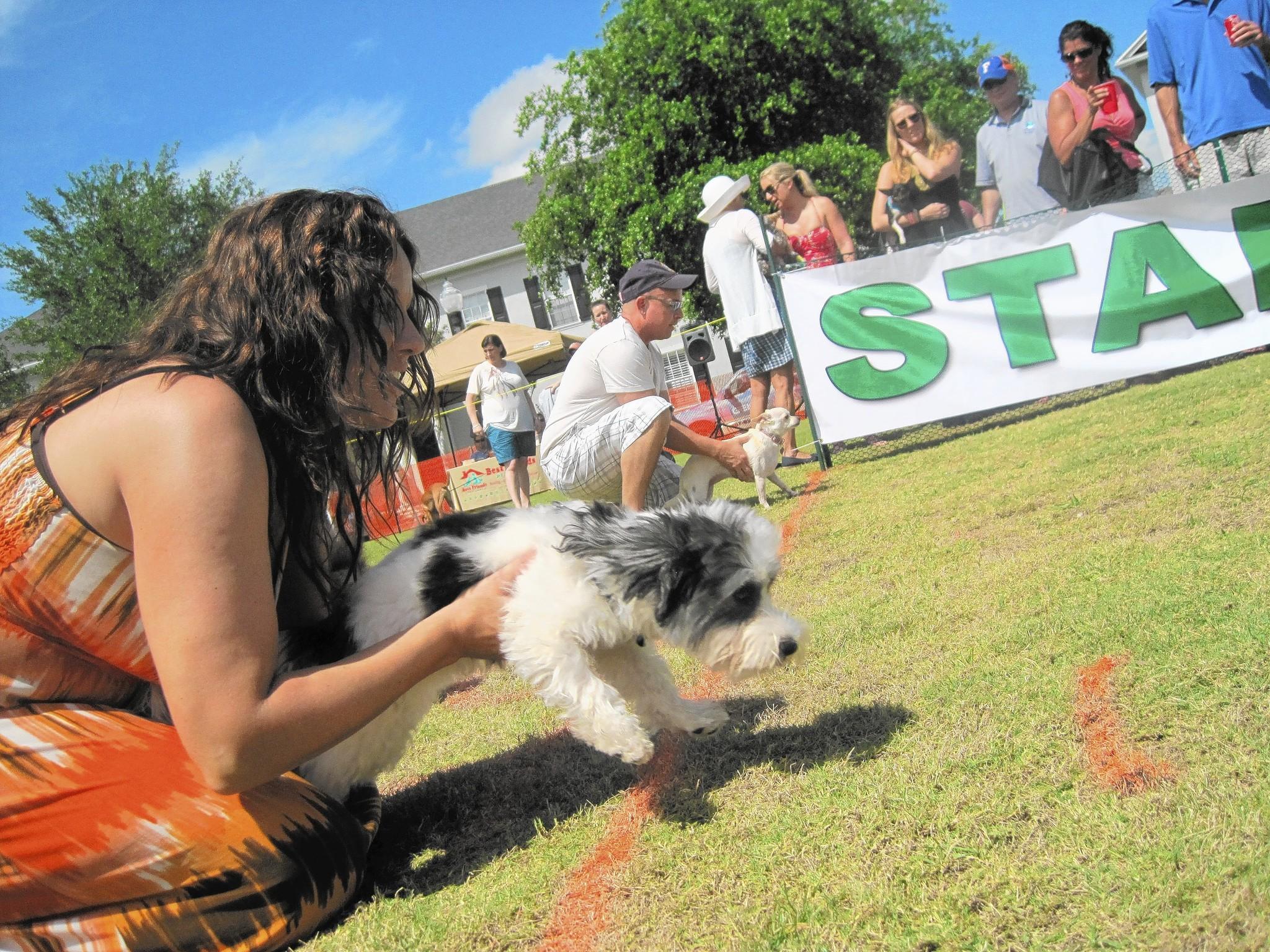 The Doggie Derby is Saturday, March 8 at Baldwin Park in Orlando.