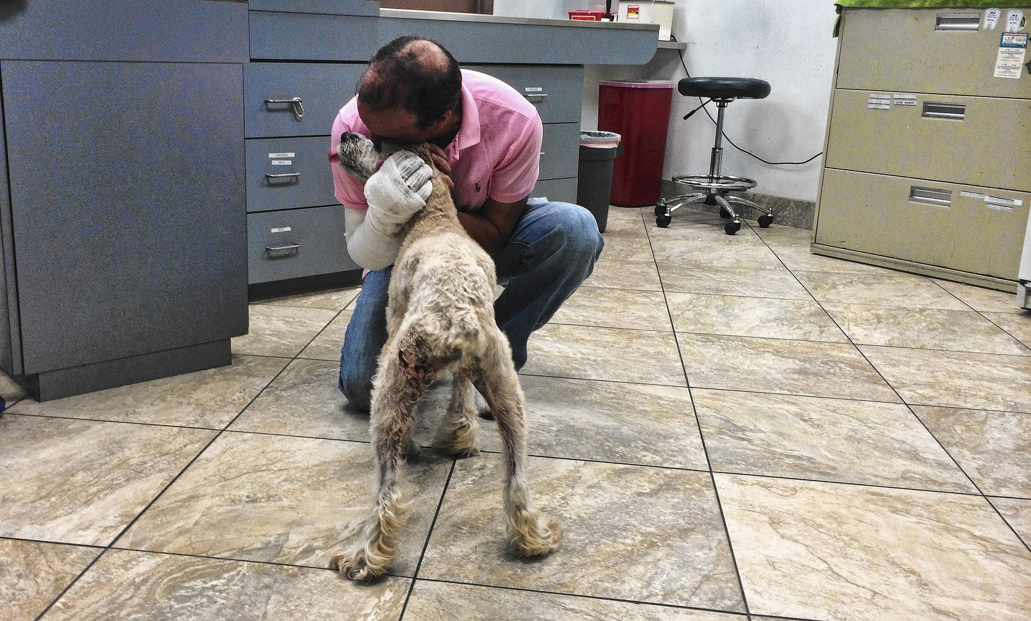 Jess Olivas of Parkland gives a welcome hug to his pet Ruby at Dr. Peter's Animal Hospital in Margate before taking her home.