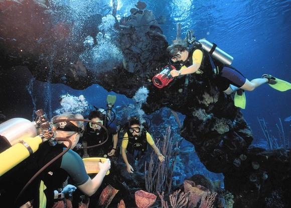 Diving at Walt Disney World's Epcot