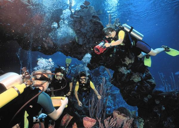 Diving at Walt Disney World's Epcot