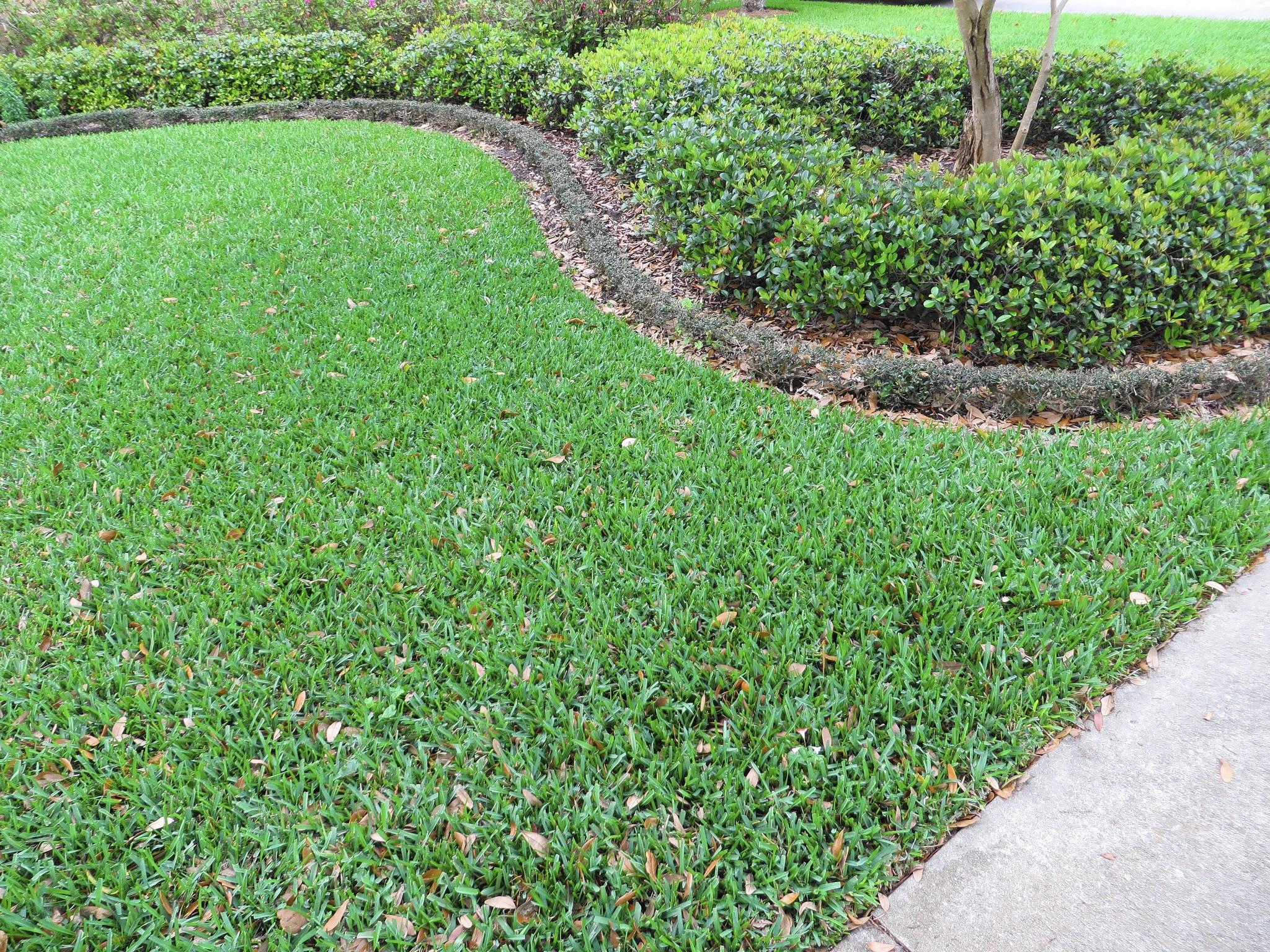A Lake Eola Heights home with a lush lawn used more than 300,000 gallons of water in 2013.