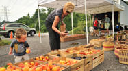 Roadside vendors, a sign of summer, fill demand for locally grown produce
