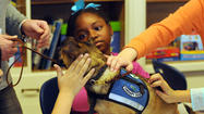 Newtown Strong Therapy Dogs