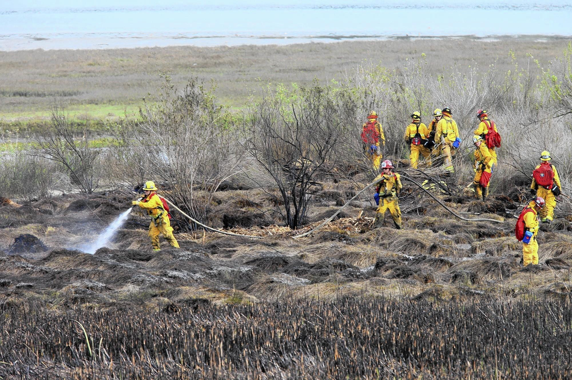 Firefighters work on extinguishing a vegetation fire that burned in the Upper Newport Bay Nature Preserve along Irvine Avenue, just north of Santiago Drive, in Newport Beach on Friday afternoon.
