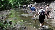 Visit Stebbins Gulch in Northeast Ohio for dramatic cliffs