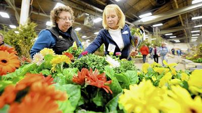 Springing ahead at the flower show