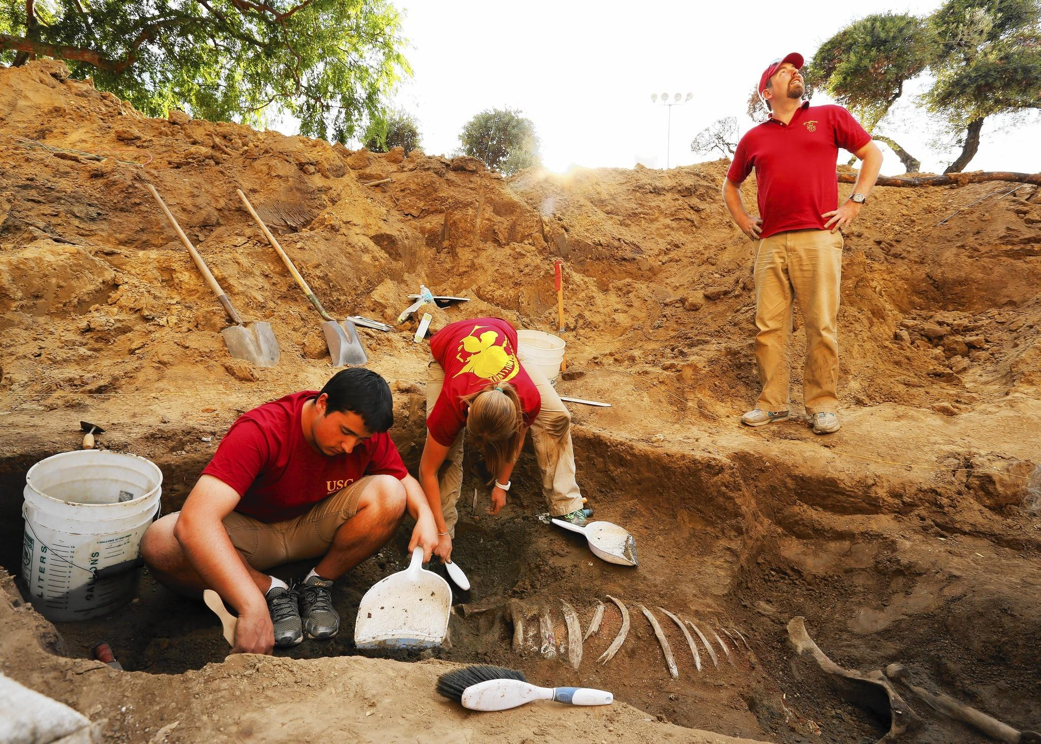 Chris Hughes, left, an archaeology student at USC; Sarah Newman, a doctoral student at Brown; and archaeologist Tom Garrison work on the exhumation of Native Diver, a racehorse who is buried at the former Hollywood Park racetrack in Inglewood.