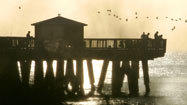 A look at South Florida piers