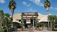 Florida Animal Attraction Guide: Jacksonville Zoo and Gardens