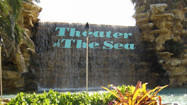 Florida Animal Attraction Guide: Theater of the Sea, Islamorada
