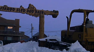Video: Nome prepares Iditarod Sled Dog Race finish