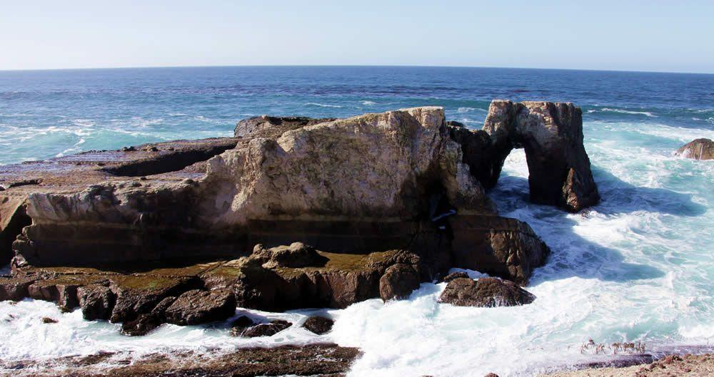 The view from Stornetta Public Lands, which will become part of California Coastal National Monument.