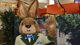 Easter Bunny Photo Experience Is Coming Soon At Woodfield Mall To Delight Families