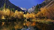 Eastern Sierra's autumn colors peak