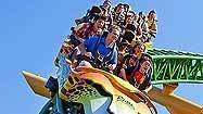 Busch Gardens Cheetah Hunt coaster and Cheetah Run animal encounter