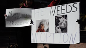 Marijuana decriminalization rally [Video]