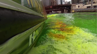 Raw video: Chicago River dyed green