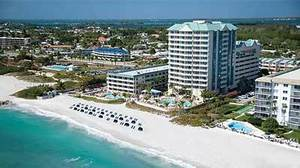 Florida travel with pets: These hotels welcome Fido