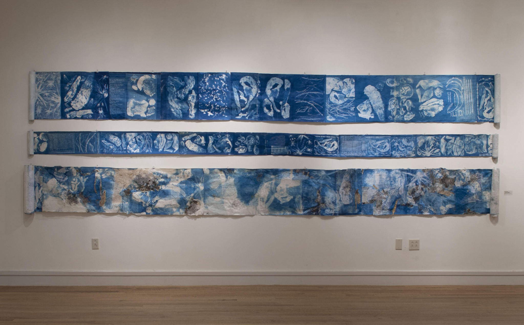 """I have come to my garden,"" Large Scroll Installations, cyanotype and mixed media on Japanese papers, 2013."