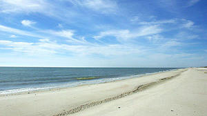St. George Island State Park offers miles and miles and miles of beautiful beaches