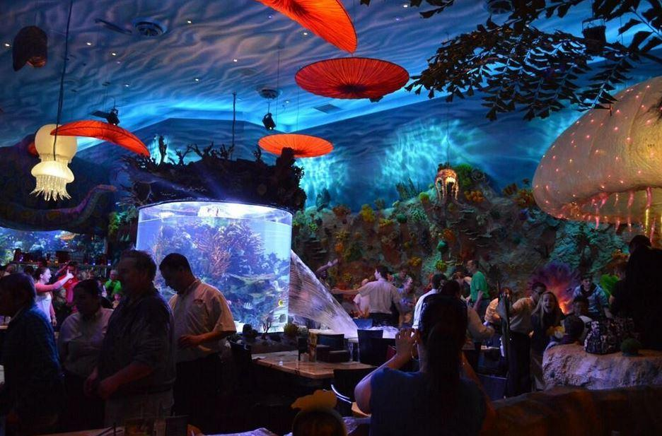 Fish Tank Bursts At Downtown Disney T Rex Cafe