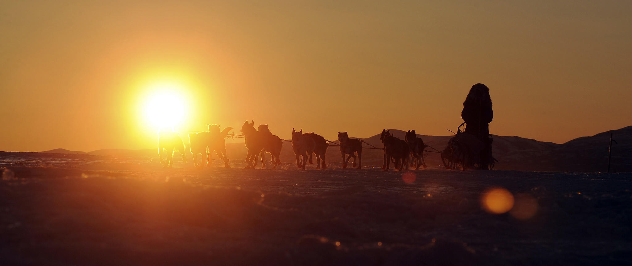 Iditarod musher John Baker of Kotzebue, Alaska, comes into the Unalakleet checkpoint at sunrise during the Iditarod Trail Sled Dog Race.